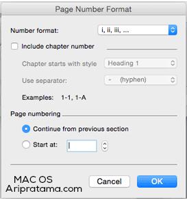 page number angka romawi mac os